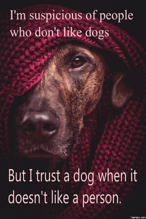 TRUST YOUR DOG! :)
